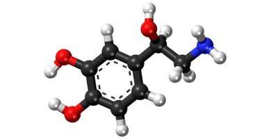 norepinephrine-680x350